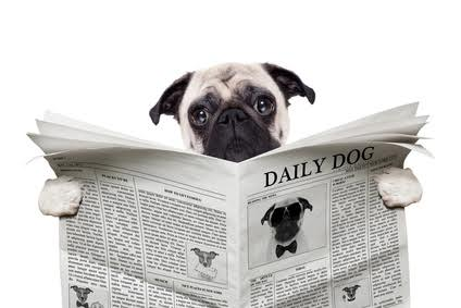 WHAT IF, YOU ALREADY HAVING YOUR FAVORITE NEWSPAPER?